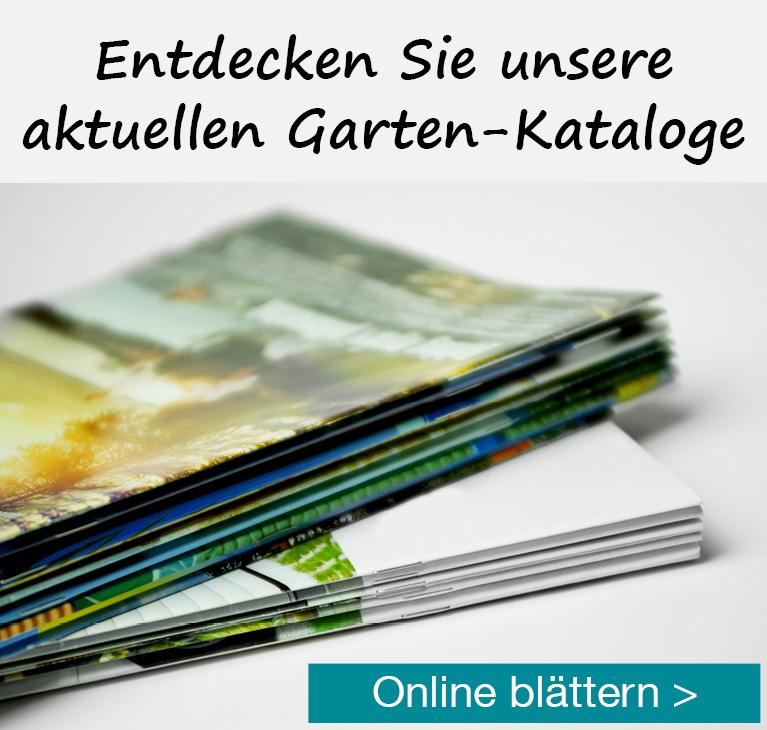 Zu den Garten-Katalogen