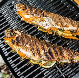 Weber Markenseite gegrillter Fisch